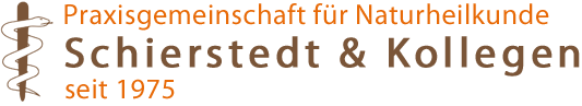 Schierstedt & Partner